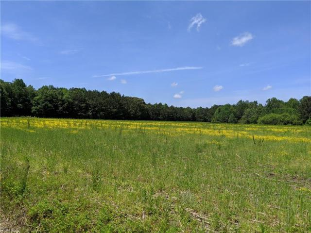 14+ac Carsley Road & Carousel Ln, Surry County, VA 23883 (#10258177) :: Momentum Real Estate