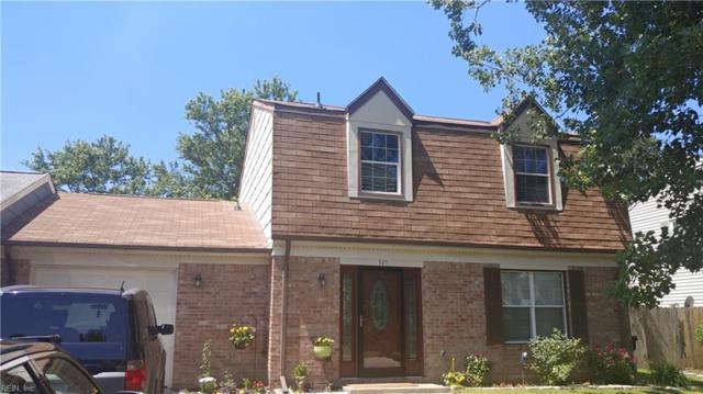 925 Wildflower Ct, Virginia Beach, VA 23452 (#10258486) :: Vasquez Real Estate Group