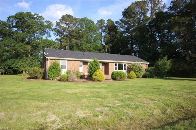 427 Clover Ln, Suffolk, VA 23434 (#10258506) :: AMW Real Estate