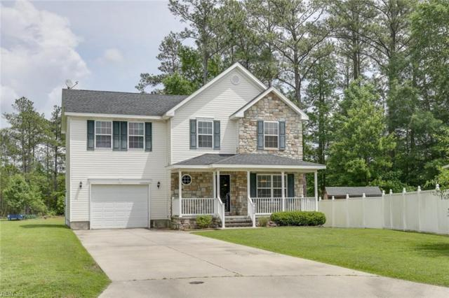 729 Meta Pointe Dr, Chesapeake, VA 23323 (#10258556) :: Momentum Real Estate
