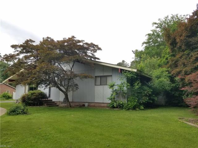 115 Obrey Dr, Isle of Wight County, VA 23314 (#10258810) :: The Kris Weaver Real Estate Team
