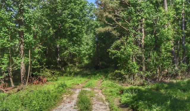 4363 Rochambeau Rd, James City County, VA 23188 (#10259139) :: Abbitt Realty Co.