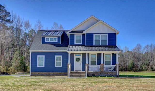 20447 Pope Swamp Trl, Isle of Wight County, VA 23487 (#10259561) :: Abbitt Realty Co.