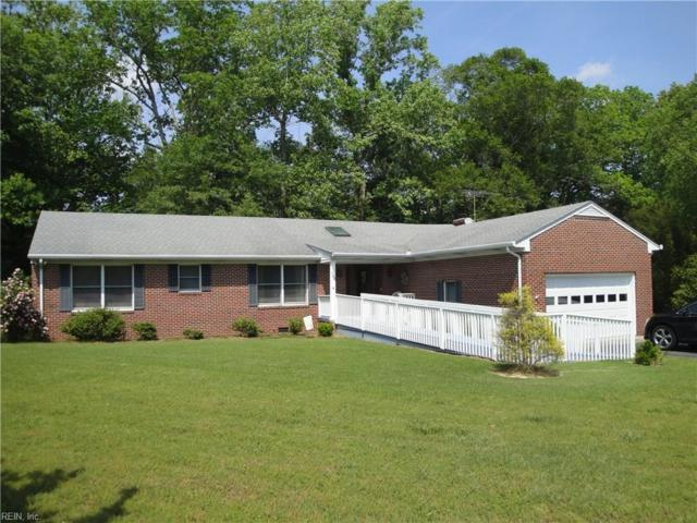100 Ayers Creek Ln, Suffolk, VA 23434 (#10259584) :: Vasquez Real Estate Group