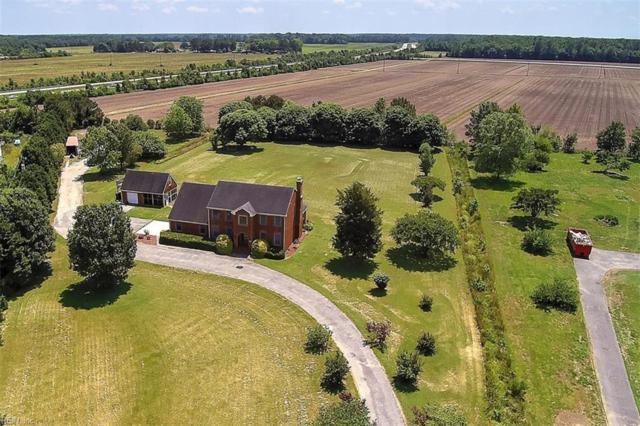 625 Trumpet Ct, Chesapeake, VA 23323 (#10259810) :: Momentum Real Estate