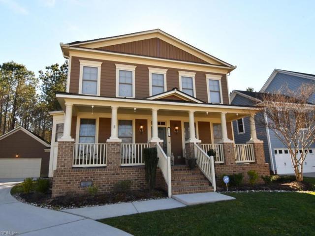 207 Wildlife Trce, Chesapeake, VA 23320 (#10259887) :: The Kris Weaver Real Estate Team