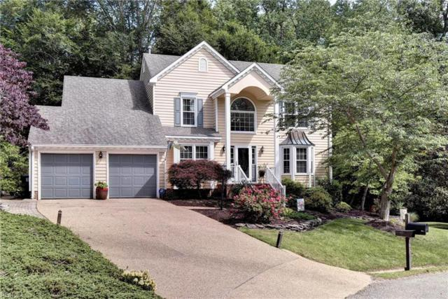 105 Blair Ct, James City County, VA 23185 (#10260319) :: 757 Realty & 804 Homes