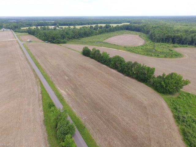 170 Ac Webb Rd, Prince George County, VA 23842 (MLS #10260800) :: Chantel Ray Real Estate