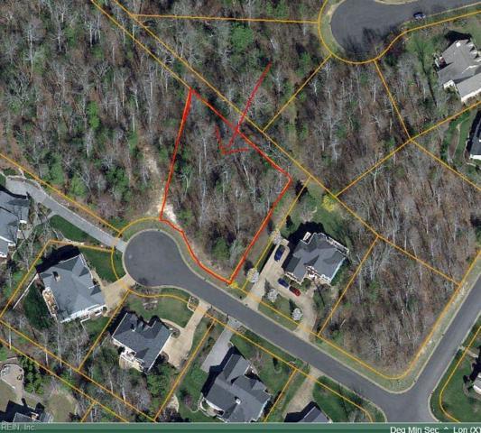 208 Monifieth, James City County, VA 23188 (MLS #10260973) :: Chantel Ray Real Estate