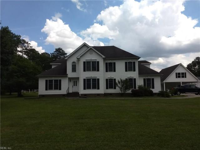 31447 Jenkins Mill Rd, Isle of Wight County, VA 23851 (MLS #10261254) :: Chantel Ray Real Estate