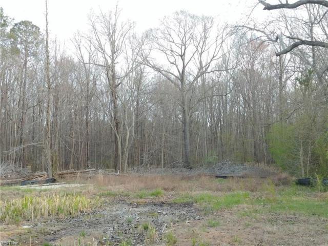 3393 Head River Rd, Virginia Beach, VA 23457 (#10261338) :: AMW Real Estate