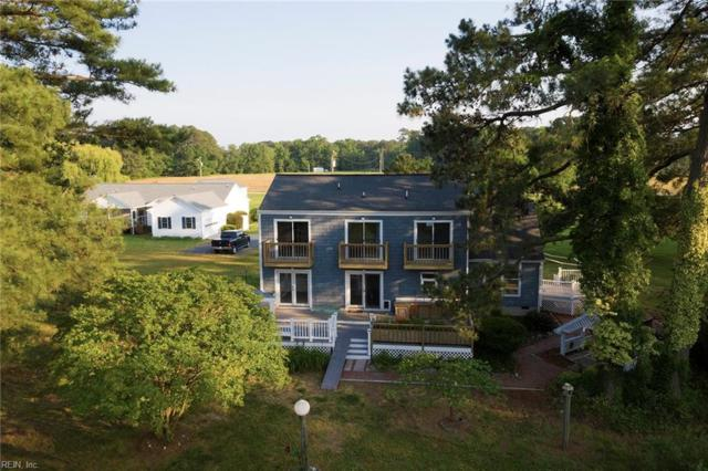 161 Yeiser Ln, Mathews County, VA 23076 (#10261448) :: Momentum Real Estate