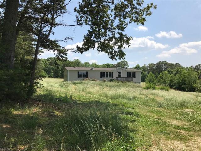 421 Trent Hatchery Rd, Appomattox County VA, VA 24522 (#10261621) :: Austin James Realty LLC