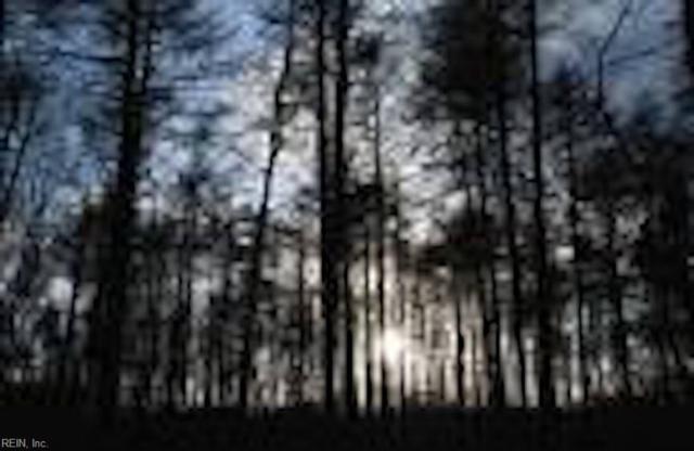 53ACR Knights Woods Rd, Mathews County, VA 23045 (#10261837) :: Momentum Real Estate