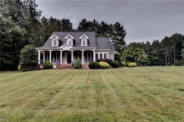 4700 House Finch Ct, New Kent County, VA 23140 (#10263684) :: Berkshire Hathaway HomeServices Towne Realty