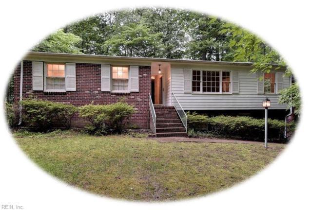 103 Edgewood Ln, James City County, VA 23185 (MLS #10263830) :: Chantel Ray Real Estate
