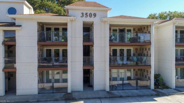 3509 Pleasant Ave #301, Norfolk, VA 23518 (#10264337) :: AMW Real Estate