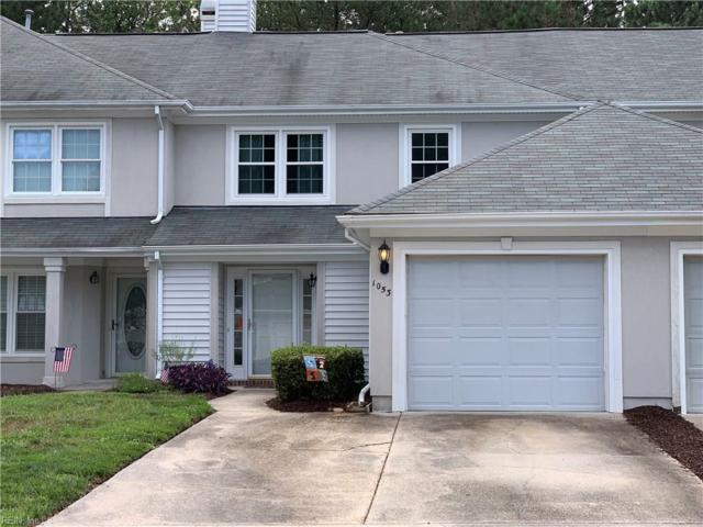 1053 Shoal Creek Trl, Chesapeake, VA 23320 (#10264344) :: Berkshire Hathaway HomeServices Towne Realty
