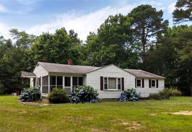 119 Chippokes Farm Rd, Surry County, VA 23883 (#10265026) :: AMW Real Estate