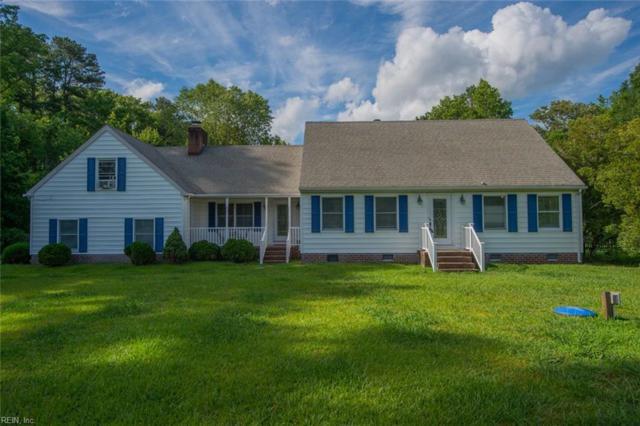 3132 Douglas Rd, Chesapeake, VA 23322 (#10265401) :: Berkshire Hathaway HomeServices Towne Realty