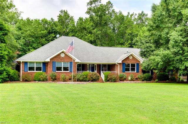 211 Appaloosa Way, Isle of Wight County, VA 23430 (#10268859) :: Momentum Real Estate