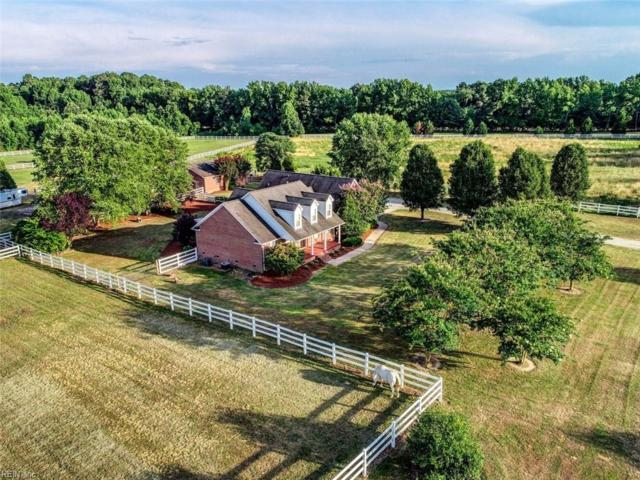817 Jericho Rd, Isle of Wight County, VA 23430 (#10268890) :: 757 Realty & 804 Homes