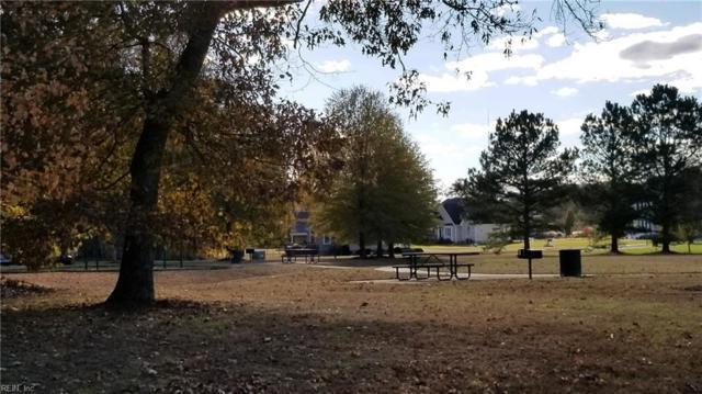125 Green Spring Dr, Suffolk, VA 23435 (MLS #10269245) :: Chantel Ray Real Estate