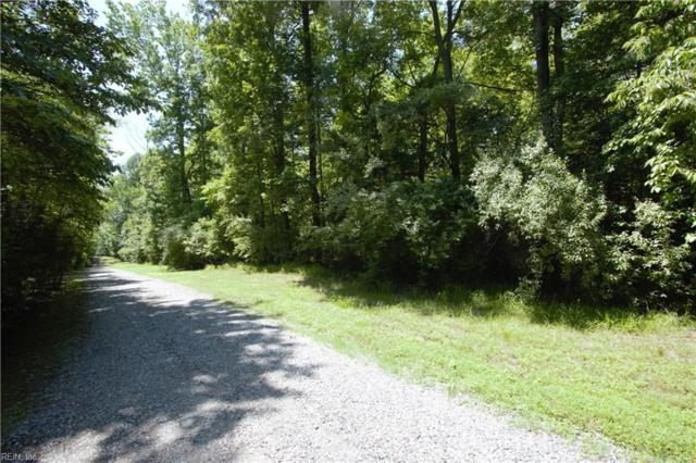 13acr Beech Creek Rd, Gloucester County, VA 23061 (#10269536) :: RE/MAX Central Realty