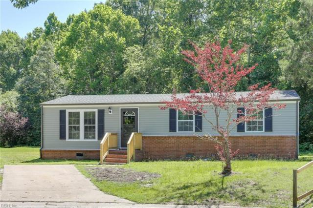 1233 Sierra Dr, Suffolk, VA 23434 (#10269814) :: Abbitt Realty Co.