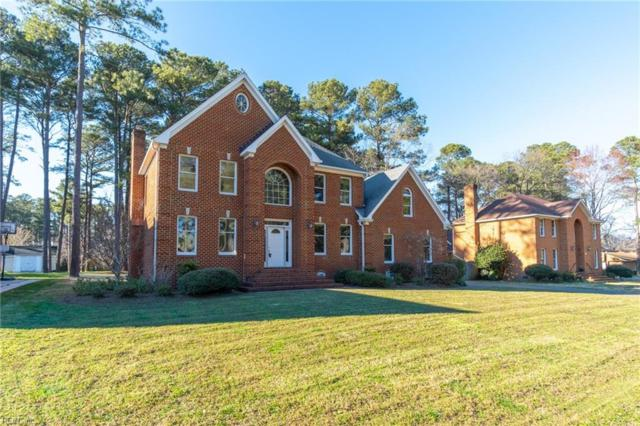 113 Pitchkettle Point Dr, Suffolk, VA 23434 (MLS #10270263) :: AtCoastal Realty