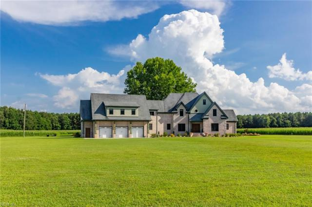 4225 Deer Forest Rd, Suffolk, VA 23434 (MLS #10270365) :: Chantel Ray Real Estate