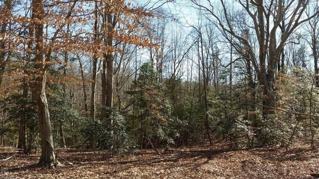 lot 2 Snowden Park Dr, Northumberland County, VA 22473 (#10273038) :: RE/MAX Central Realty