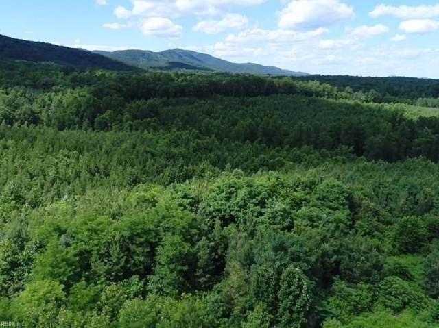 459AC Green Creek Rd, Nelson County VA, VA 22969 (#10274580) :: Abbitt Realty Co.