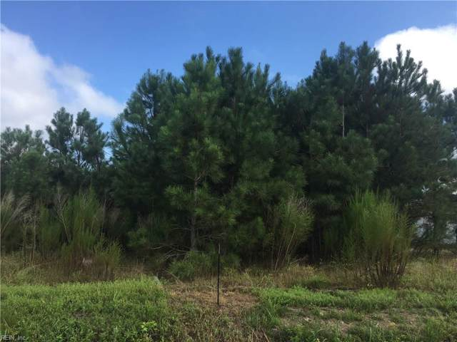LOT 6 Melon Field Rd, Southampton County, VA 23874 (#10276971) :: The Kris Weaver Real Estate Team