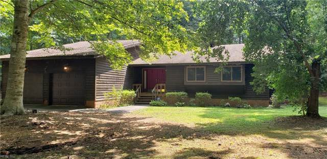 4376 Lake Prince Dr, Suffolk, VA 23434 (#10277067) :: Abbitt Realty Co.