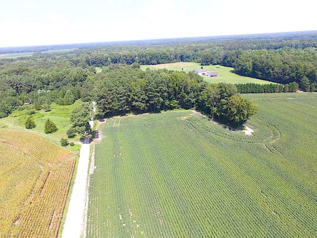 4 Ac Dews Plantation Rd, Isle of Wight County, VA 23430 (#10277656) :: Austin James Realty LLC