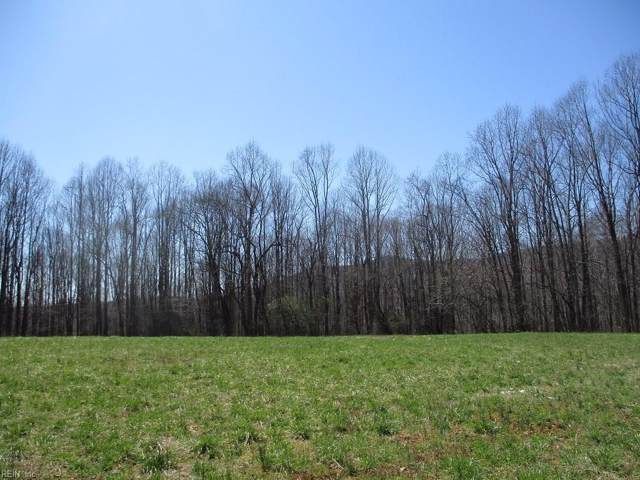 1872 Sailors Creek Rd, Other Virginia, VA 99999 (#10278402) :: Abbitt Realty Co.