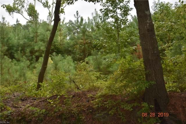 57 Nettles Ln, Hampton, VA 23666 (#10278832) :: The Kris Weaver Real Estate Team