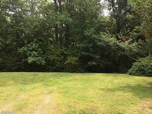 4798 Afton Ct, Suffolk, VA 23434 (MLS #10278901) :: Chantel Ray Real Estate