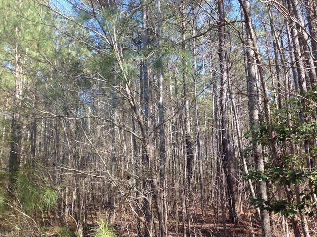 1.08ac Johnsons Mill Rd, Southampton County, VA 23878 (#10281702) :: RE/MAX Central Realty