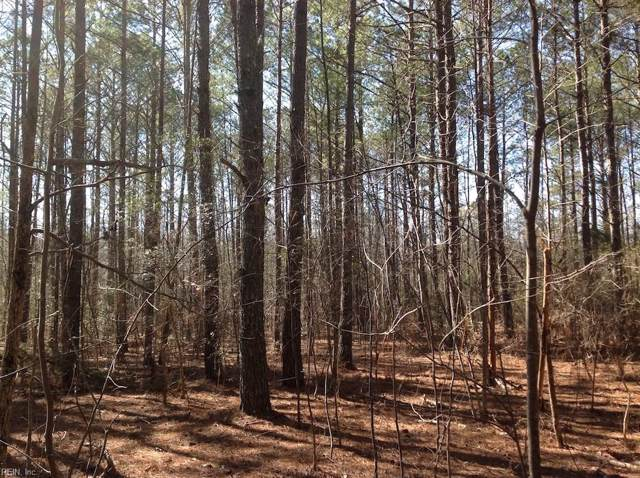1.76 Vicksville Rd, Southampton County, VA 23878 (#10281709) :: RE/MAX Central Realty