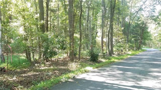 2240 Lake Powell Rd, James City County, VA 23185 (#10283144) :: Atkinson Realty
