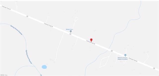 8+ACR Colonial Trl W, Surry County, VA 23839 (MLS #10284048) :: Chantel Ray Real Estate