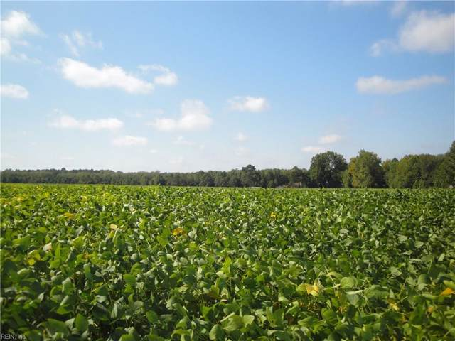 10550 Ellis Rd, Suffolk, VA 23437 (MLS #10284241) :: Chantel Ray Real Estate