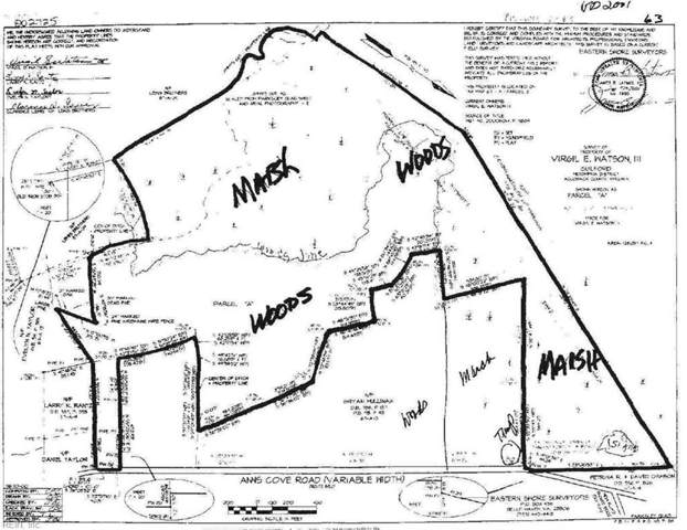 125 Ac Anns Cove Rd, Accomack County, VA 23308 (#10284912) :: The Bell Tower Real Estate Team