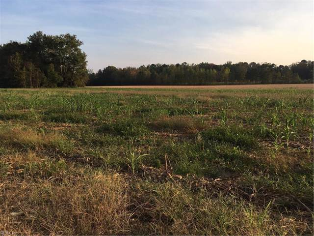 82 Ac Ivor Rd, Southampton County, VA 23837 (#10284925) :: Berkshire Hathaway HomeServices Towne Realty