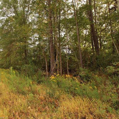 LOT 19 Booker T Dr, Isle of Wight County, VA 23314 (#10285372) :: Momentum Real Estate