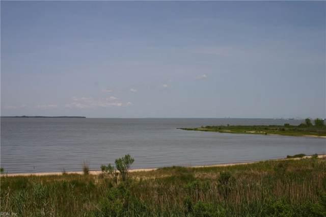 L123 River Park Dr, Suffolk, VA 23435 (MLS #10286802) :: AtCoastal Realty