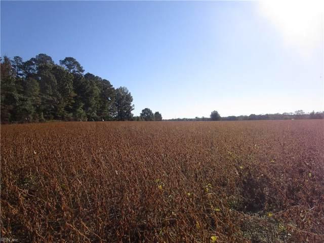 22+ Ac Desert (Parcel 3) Rd, Suffolk, VA 23434 (#10288347) :: Kristie Weaver, REALTOR