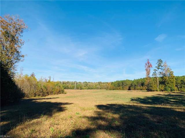 51+ Ac Private Drive, Southampton County, VA 23866 (#10288803) :: Austin James Realty LLC